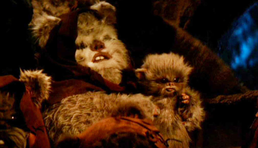 original baby ewok sciencefictionarchivescom